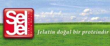 Seljel Jelatin2